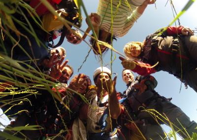 Grupos skydive